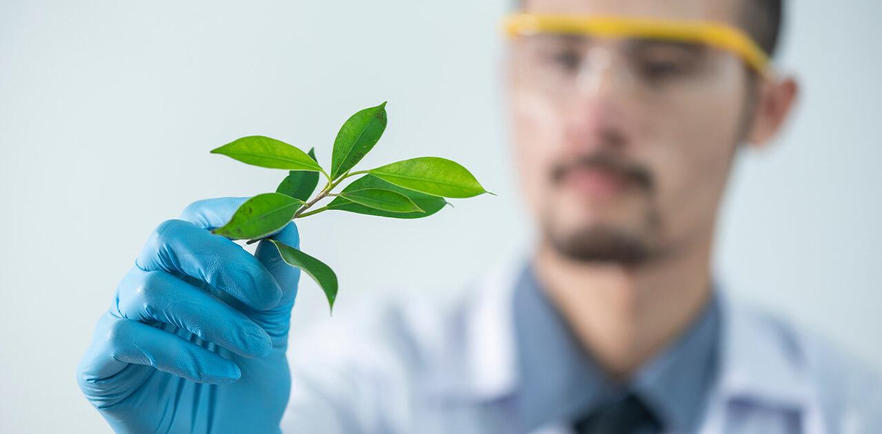 Was macht ein*e Biologe*Biologin?